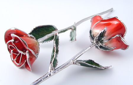 Platinum Trim Glazed Real Rose