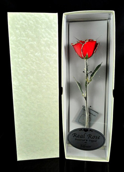 silver trim rose gift box