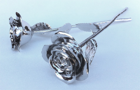 White Gold Roses on Side
